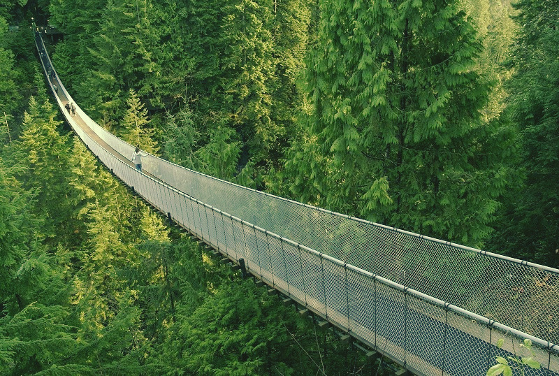 BC suspension bridge